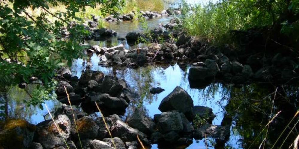 Prehistoric fish traps at Ahjumawi Lava Springs State Park. – courtesy of Ahjumawi Lava Springs State Park