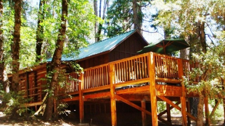 Spruce Cabin – R. Hertzberg