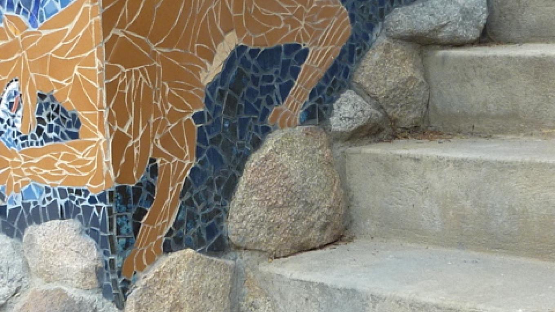cougar Desending – Frances Pyles