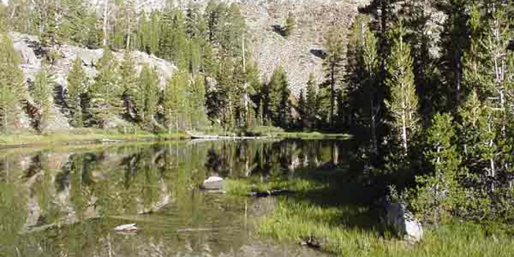 Lee Vining Canyon, Inyo National Forest – Public Domain