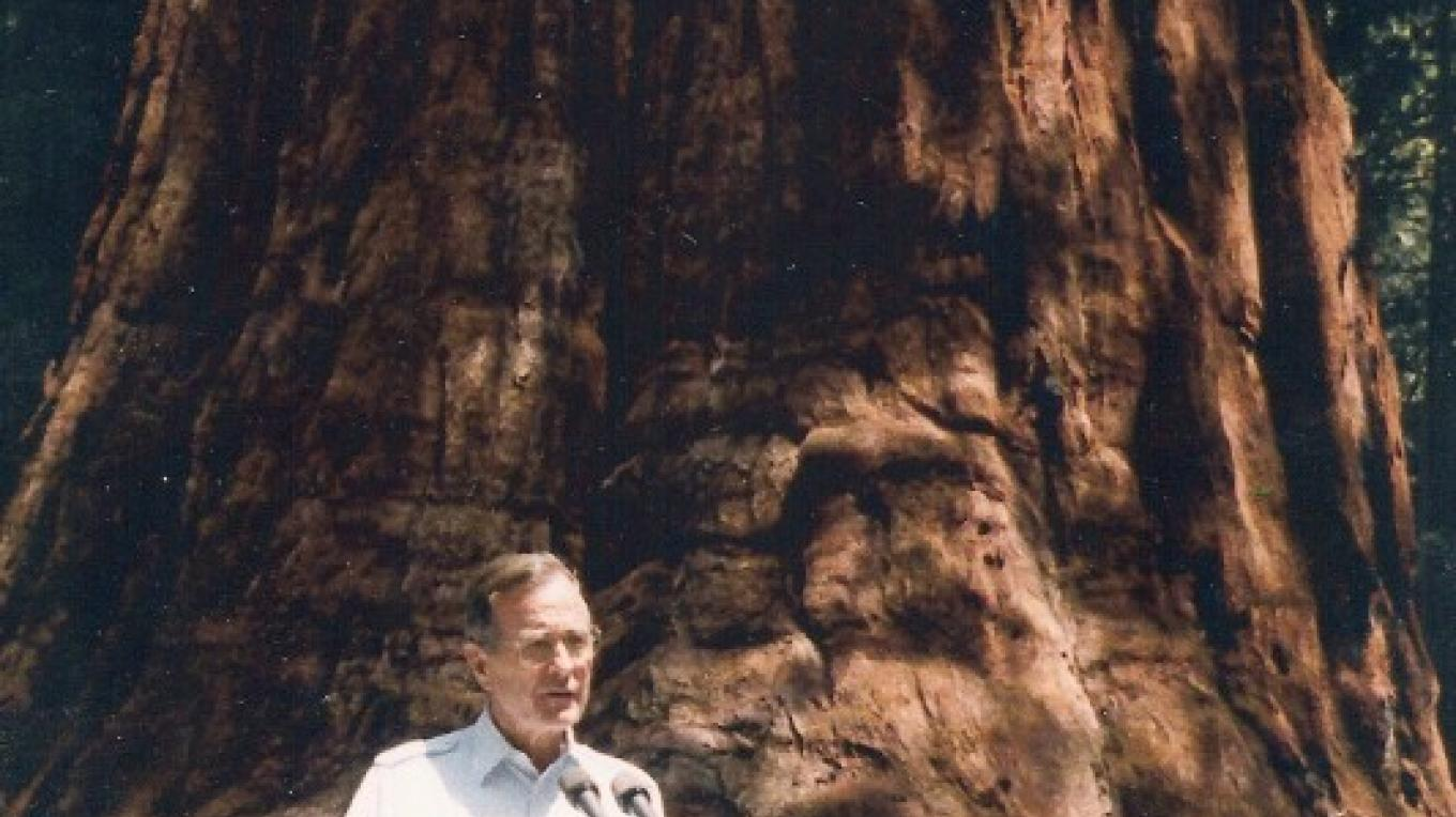 George H.W. Bush announces Presidential Proclamation to protect Giant Sequoia Groves – White House