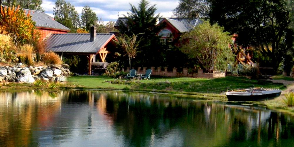 Pond View – Mark Hamlin