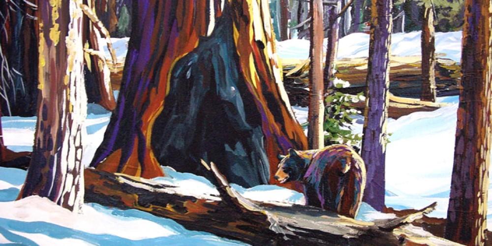 Congress Trail Bear. – Nadi Spencer