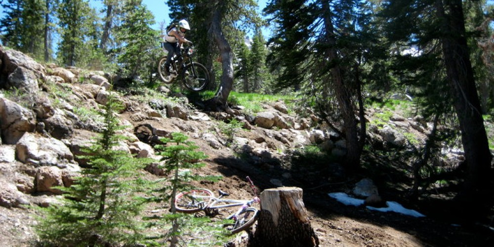 Droppin' hardtails – Tyler Rothermel