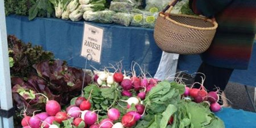 Shop for your favorite local produce and products today and every Saturday, 8-noon year round at Auburn. – Foothill Farmers Market