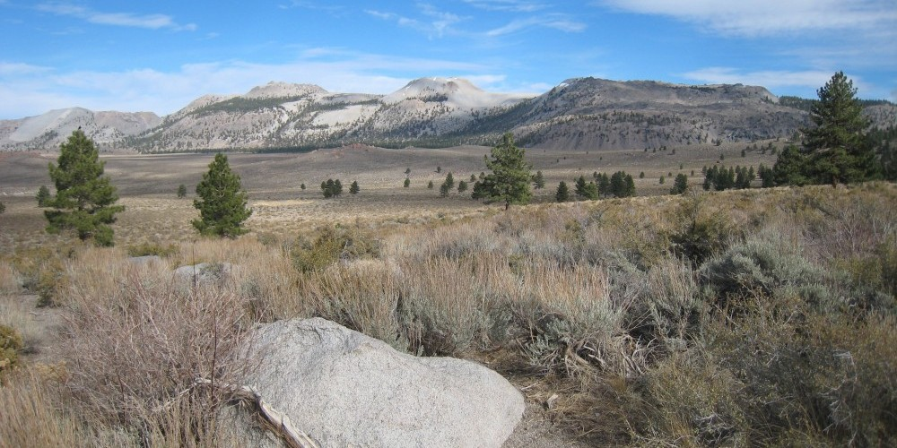Viewpoint looking towards Mono Craters