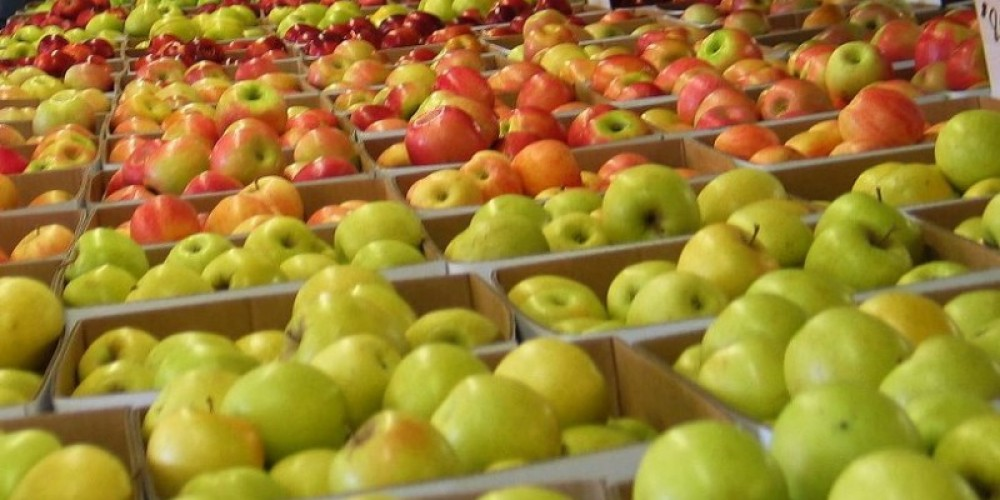 Apple Hill is right around the corner from The Davies Family Inn.