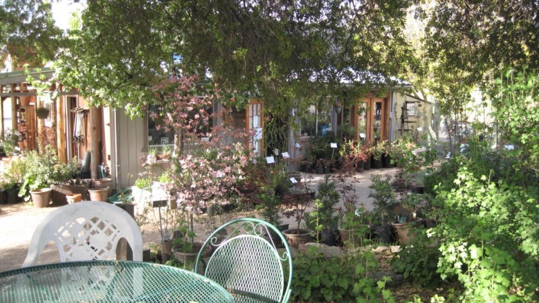 View from deck – Bonnie Bladen