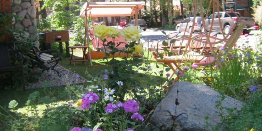 Blue Angel Garden – Crystal Ricotta