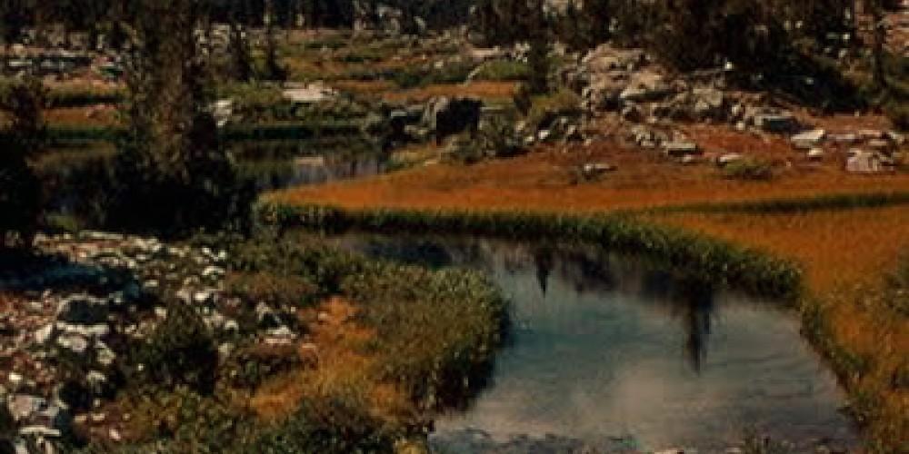 Kings Canyon National Park