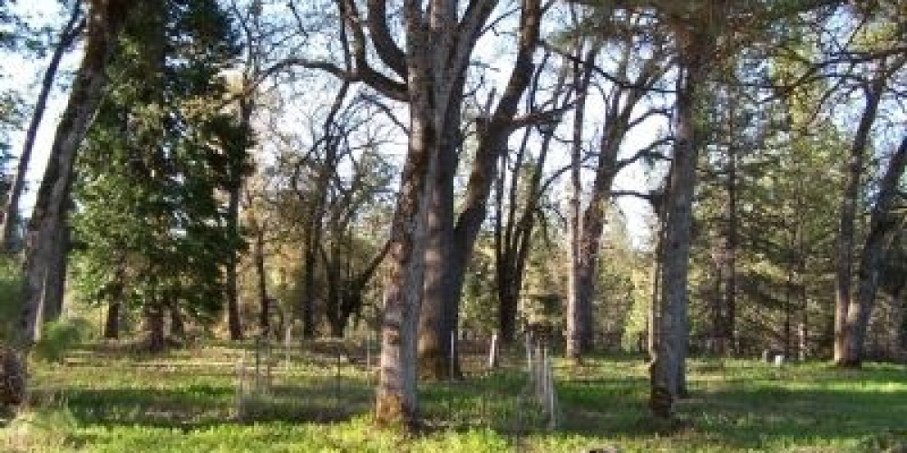 Sandy Gulch Cemetery – Historical Marker Database
