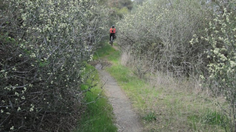 Biking the El Dorado Trail – www.eldoradotrail.com