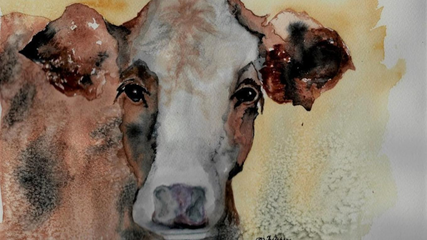 Betty Thatcher paints home and pet portraits, still life, local historical barns, buildings, and livestock. She uses various papers, goauche, water color and ink. – Betty Thatcher