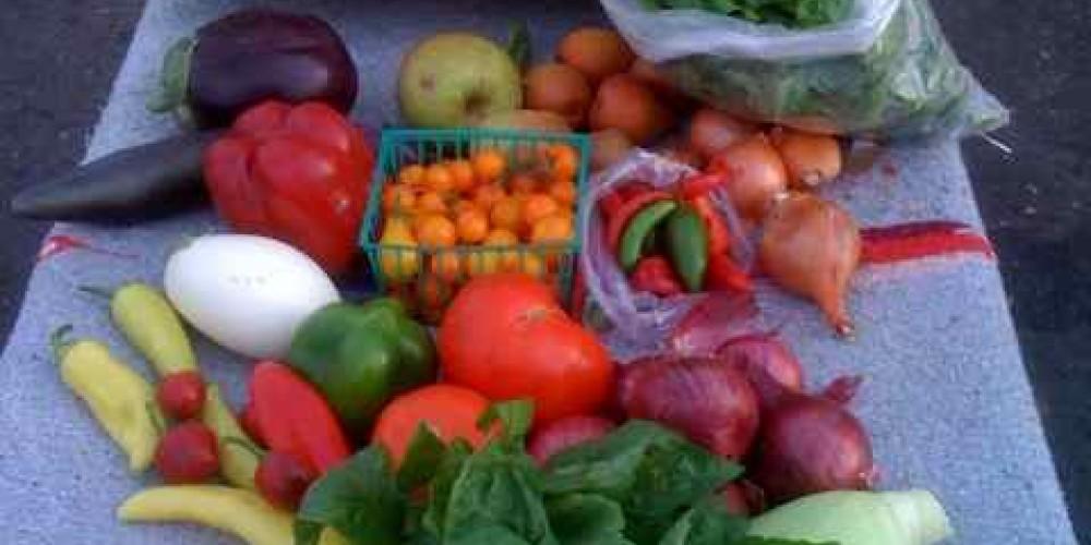 An MLH box of fresh Local Produce – James Hackworth