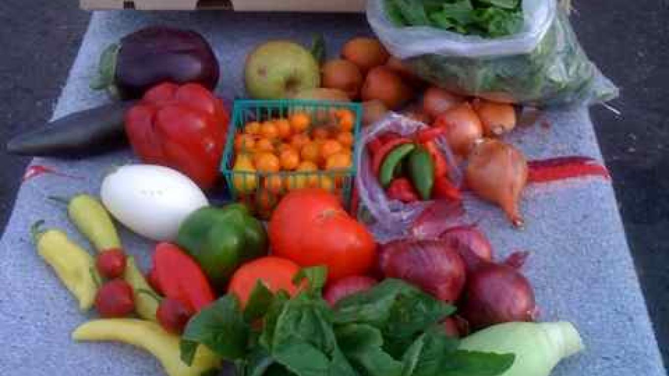 An MLH box of fresh Local Produce – James Hackworth