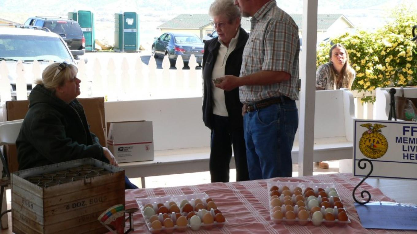 A local FFA member's project is raising chickens and selling fresh eggs! – David Dills