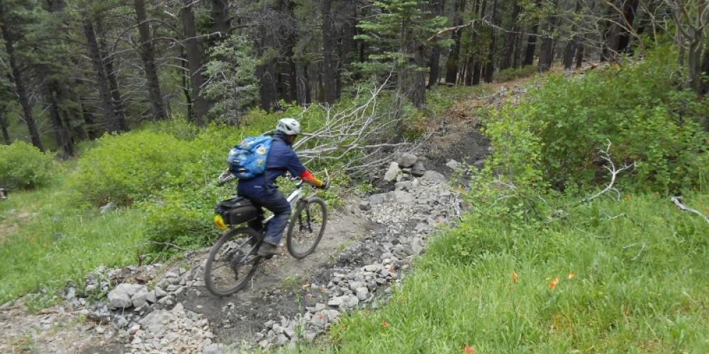 Sierra Canyon Trail – Carson Valley Trails Association