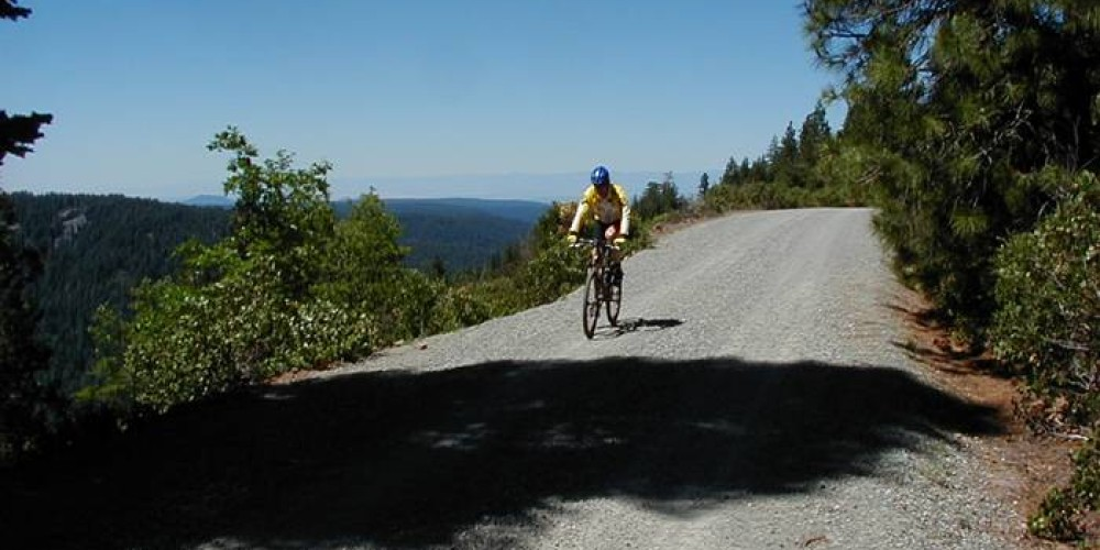 Mountain biking is popular on the forest roads of Latour.