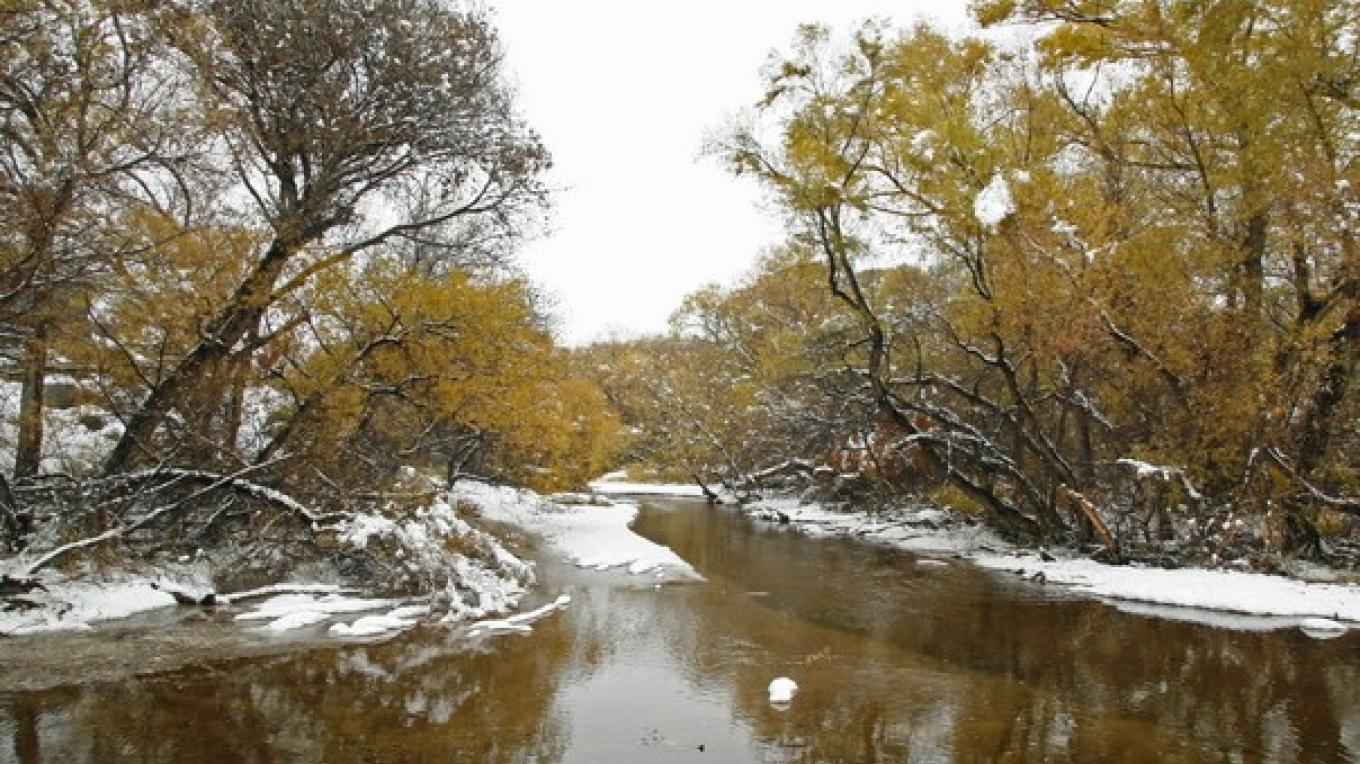 The South Fork of the Kern River along Sierra Way. Audubon\'s Kern River Preserve is on both sides of the road. – Alison Sheehey