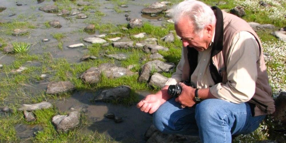 Spotting Tadpole Shrimp in a vernal pool on top of Table Mtn – Bridget Fithian