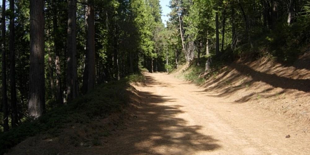 Along the Trail – Wiuldwood Inn-Twain Harte