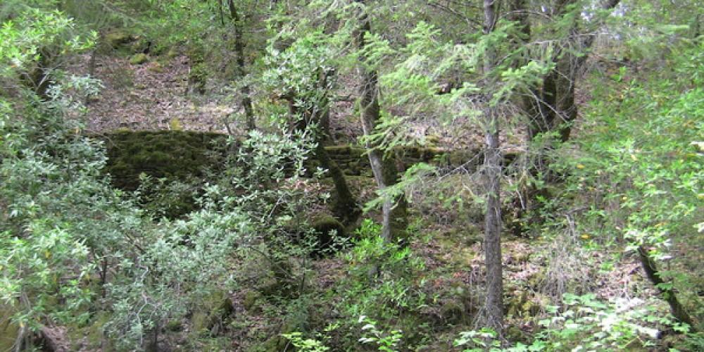 19th Century Mining Road visible acroos the river at Bogus Thunder. – Bill Mash