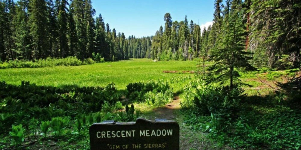 Crescent Meadow is one of many verdant meadows dotting Sequoia and Kings Canyon National Parks. – NPS/Rick Cain