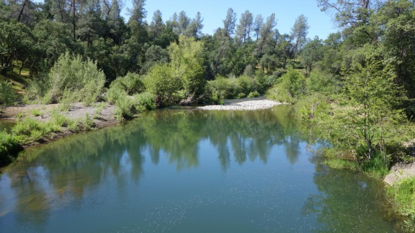 Shasta Land Trust protects water quality and salmon habitat. – Anne Murphy