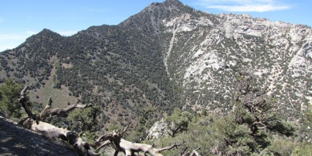 Owens Peak in upper Indian Wells Canyon – Shelley Ellis