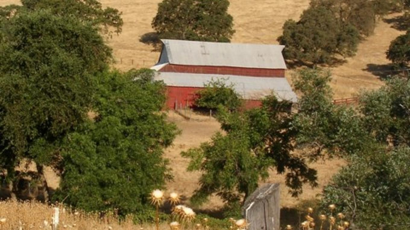 Sutter Creek is situated in the quiet, oak studded, rolling hills of the Sierra Nevada Foothills. – Klosowski