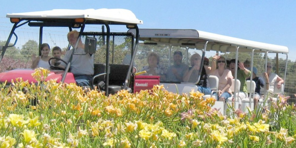 A tram ride tour of Amador Flower Farm, offered for free on event days! – Leslie Sellman-Sant