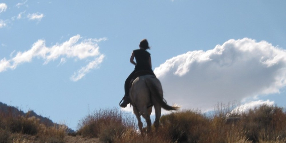 Scenic trail rides – Julie Fought