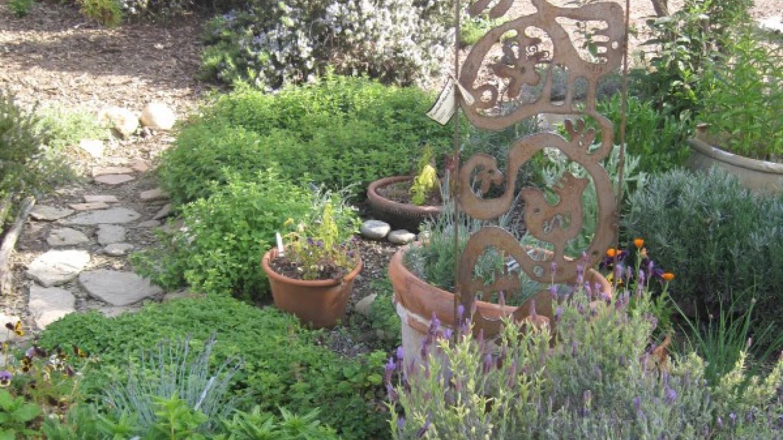 Herb Garden – Bonnie Bladen