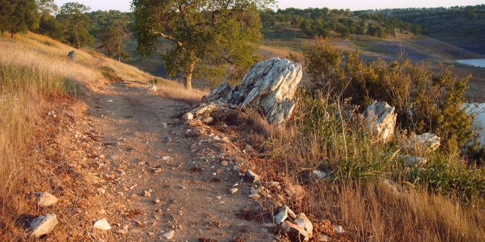 Shoreline trail 1 – Dave Jigour