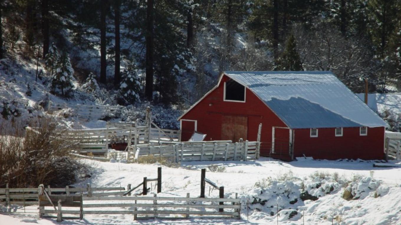 Cedar Pass – Jean Bilodeaux