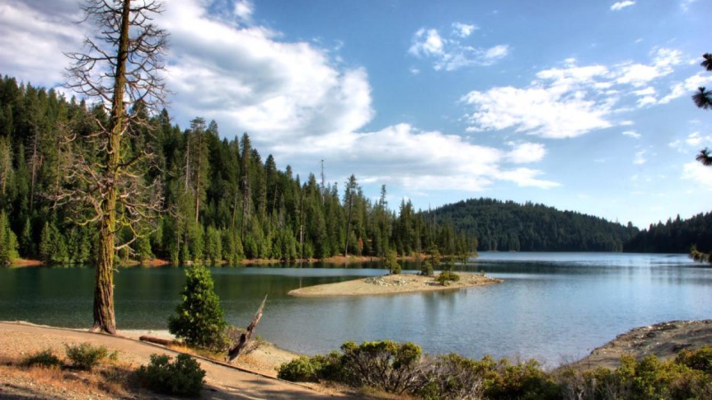 Sugar Pine Day Use Area – Darin Pointer - www.ffgphotos.com