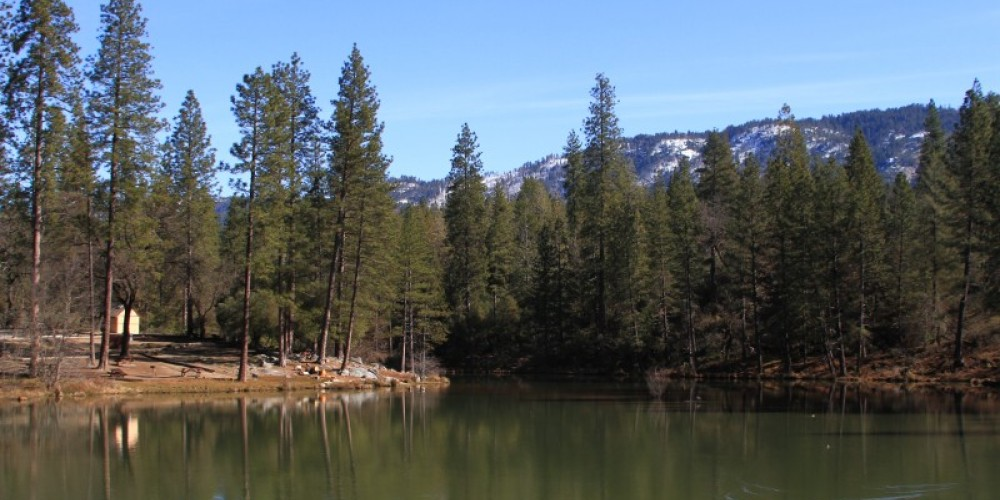 A small lake with picnic facilities in a quiet setting. – Michael Olwyler