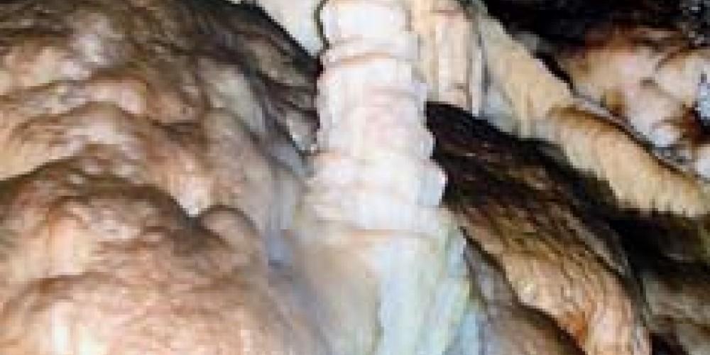 www.caverntours.com