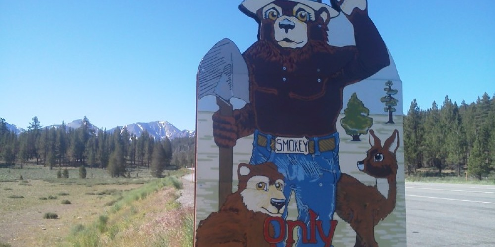 Smokey The Bear Sign – DJ's Snowmobile Adventures, Inc.