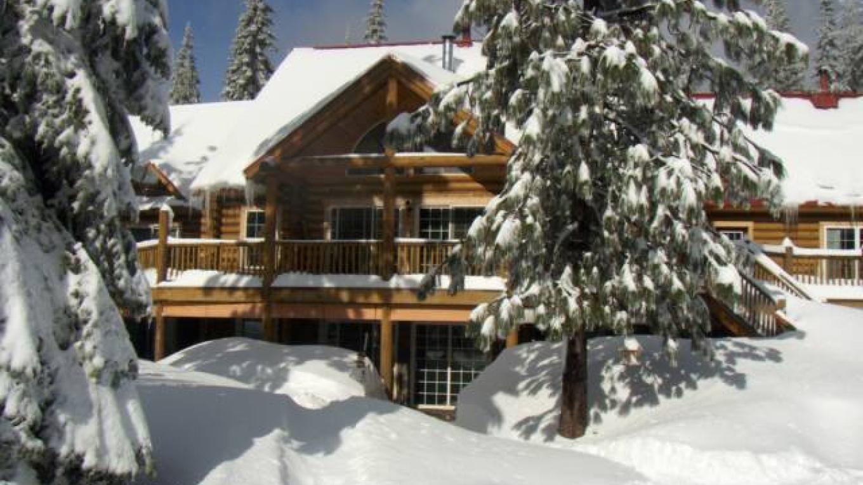 Christmas Tree Vineyard Lodge - Winter – Claudia Raco