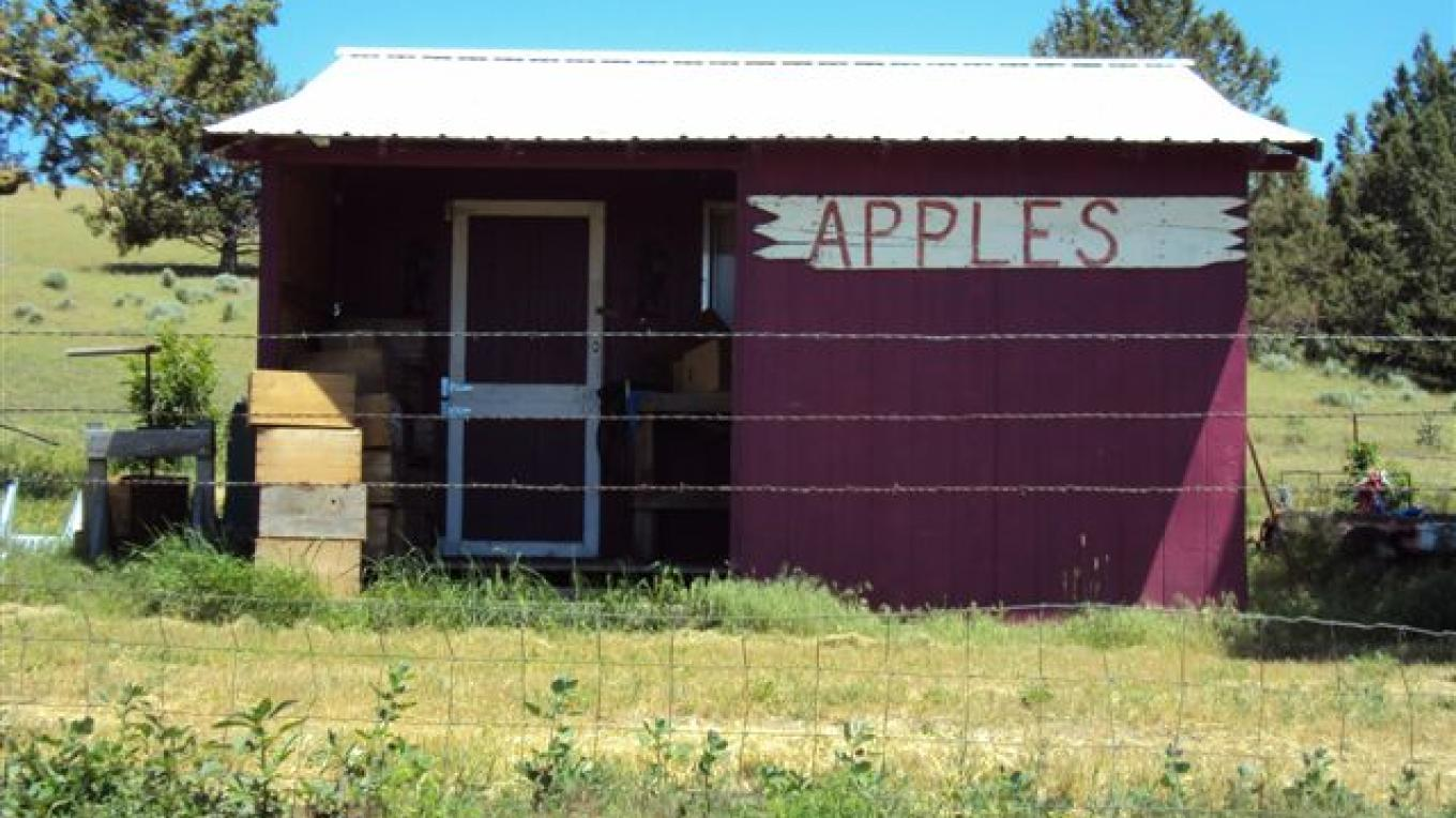 The Apple Shack – Betsy Ingraham