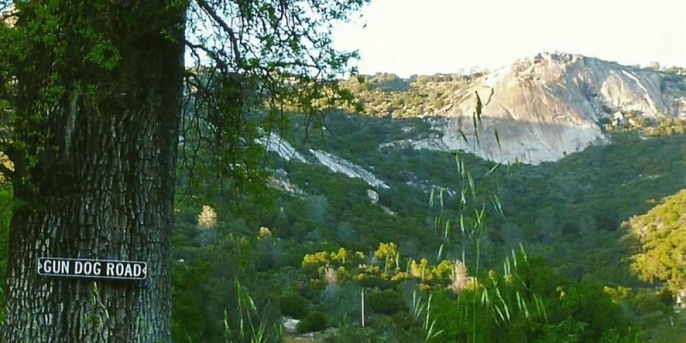Cap Rock, spring – Susan Leeper