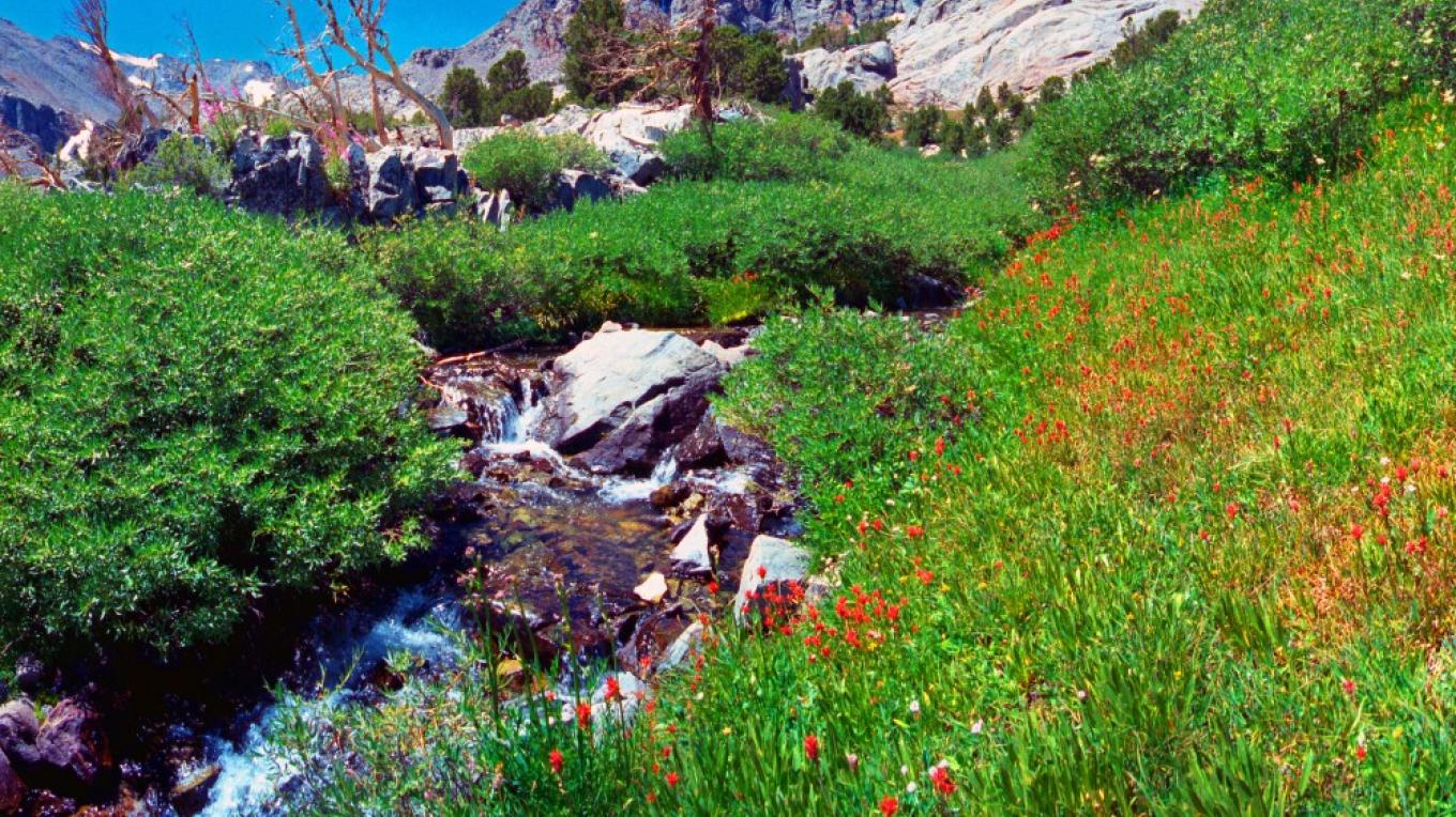 Baxter Pass is a classic high Sierra setting that sets the scene for the nearby John Muir Wilderness Area – Paul Fretheim