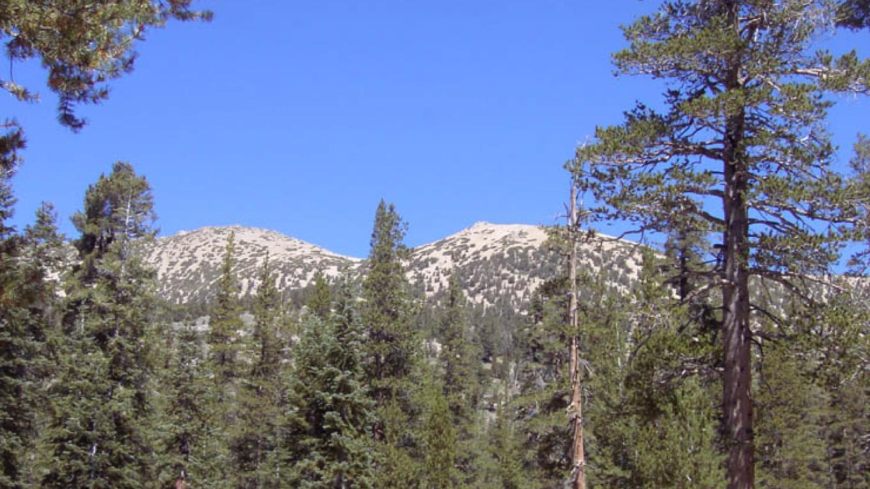 Aim for trail between both peaks