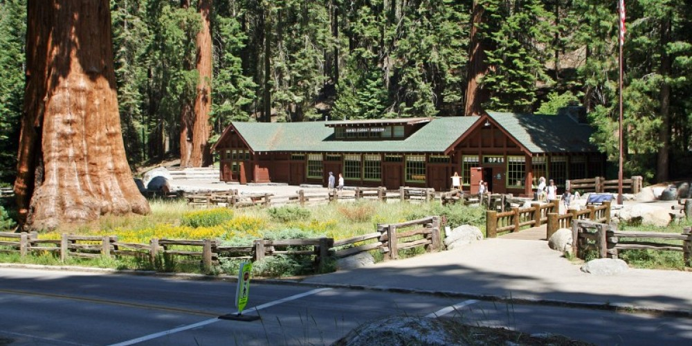 Come on in to the Giant Forest Museum to learn about giant sequoia trees, fire, and more! Books, maps, and postcards are available for purchase. – National Park Service photo - Rick Cain