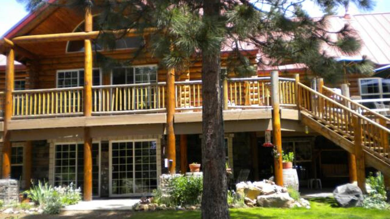 Christmas Tree Vineyard Lodge - Summer – Claudia Raco