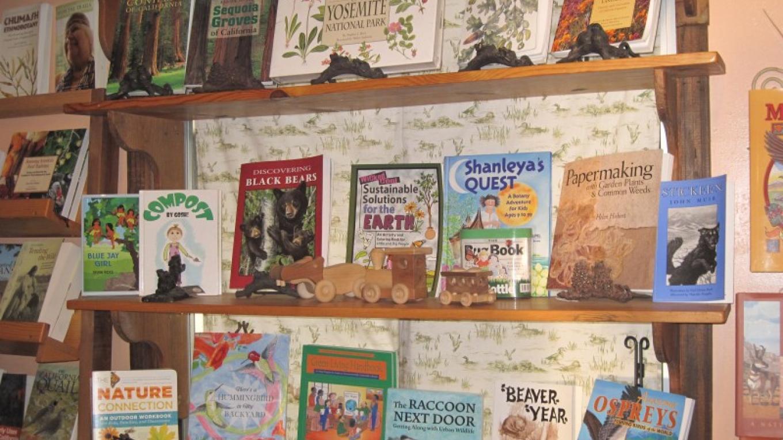 Children's Book Shelf – Bonnie Bladen