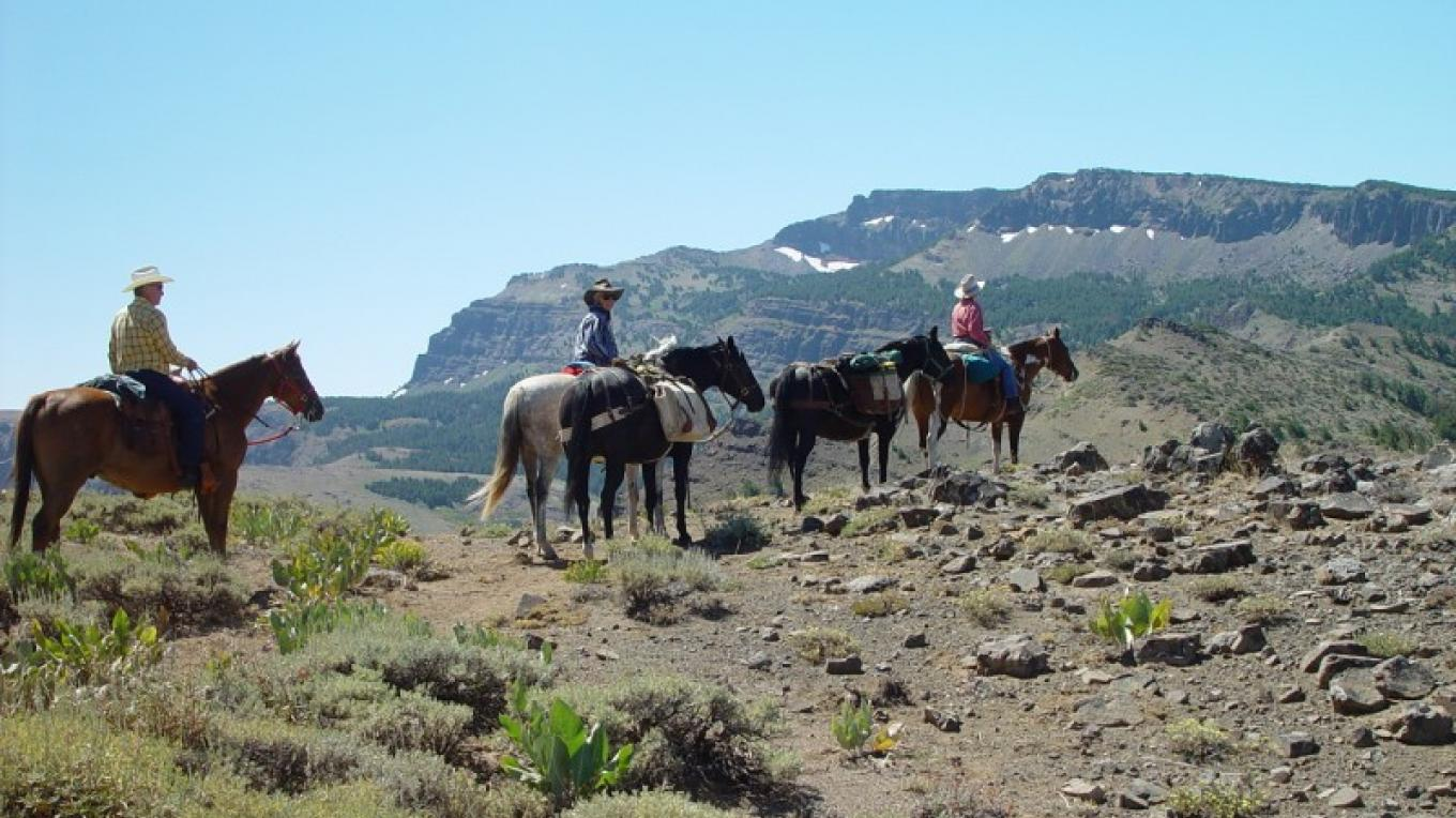 Horseback is the easiest way to travel in the South Warner Wilderness. Riders are on their way to Patterson Lake from Pepperdine Camp. – Jean Bilodeaux