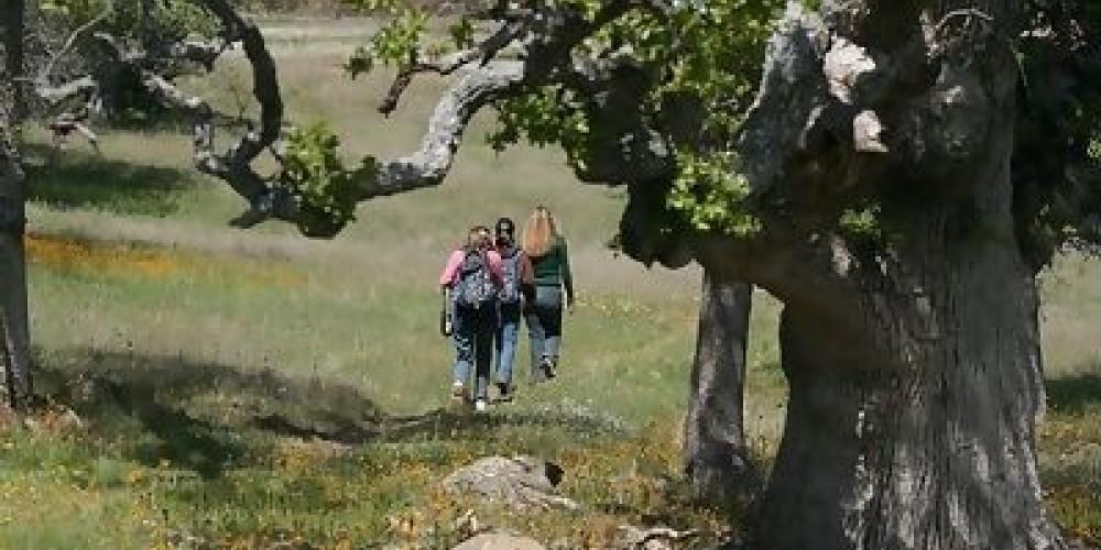 Hiking on the McKenzie Preserve – Jeannette Tuitele-Lewis
