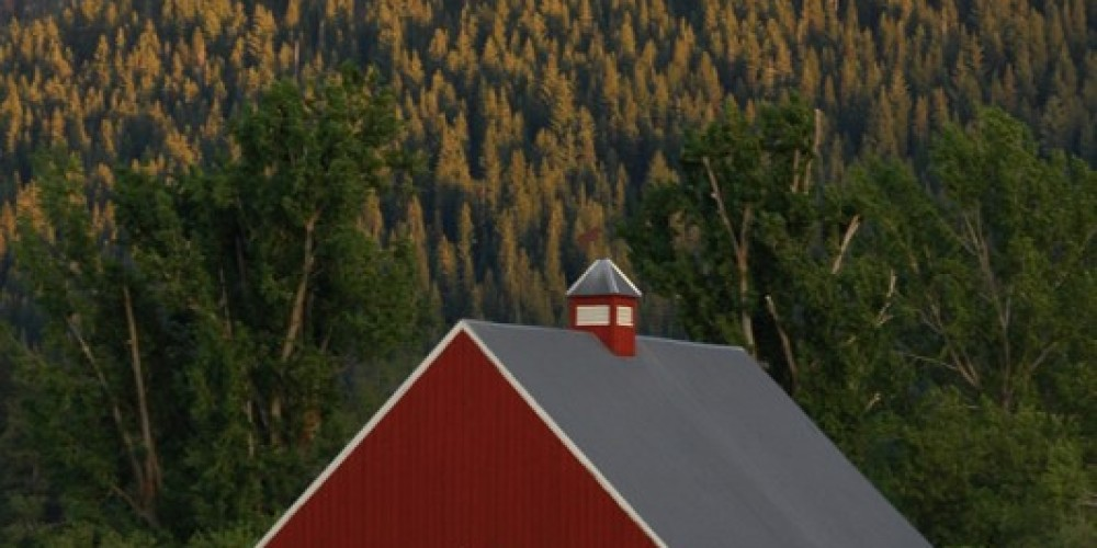 Sierraville is surrounded by cattlefarms and barns – Mary Davey